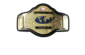 TITLE - The TV Champion